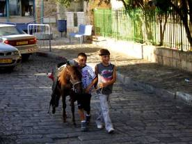 2 Boys & a Pony